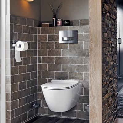 Zwevend toilet