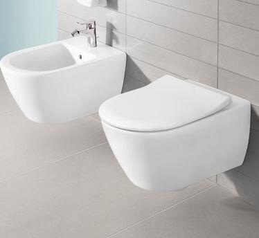 Villeroy en Boch toilet